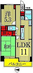 東京都墨田区緑4丁目の賃貸マンションの間取り