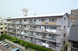 ロイヤルコーポ堺[3階]の外観