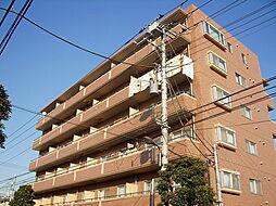 東京都葛飾区小菅4丁目の賃貸マンションの外観