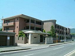 レジデンス渡邊V[3階]の外観