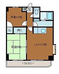 スクエアK3[10階]の間取り