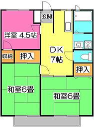 埼玉県所沢市上新井5丁目の賃貸アパートの間取り