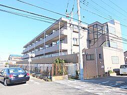 千葉県松戸市古ケ崎2の賃貸マンションの外観