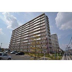 愛知県稲沢市長束町カキ田の賃貸マンションの外観