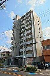 COZY COURTIII(コージーコートスリー)[10階]の外観