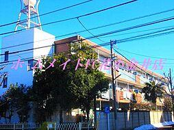 メゾン花小金井[1階]の外観