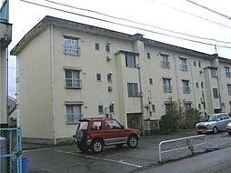 南富山コーポ3号棟[311号室]の外観