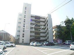 ハイツヨシカワ[7階]の外観