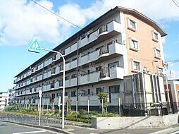 隆豊ハイツ[2階]の外観