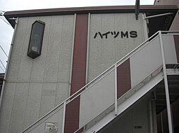 ハイツMS bt[203kk号室]の外観
