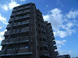 グレイスフルマンション箱崎東[8階]の外観