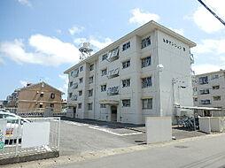 光栄マンション B棟[301号室]の外観