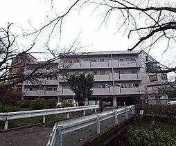 京都府京都市右京区嵯峨新宮町の賃貸マンションの外観