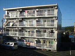 リバーサイドマルナカ[4階]の外観