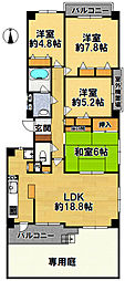 兵庫県三田市ゆりのき台3丁目の賃貸マンションの間取り