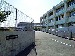棚尾小学校 580m
