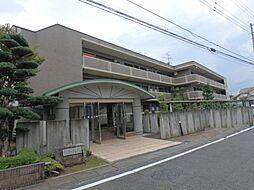 埼玉県坂戸市にっさい花みず木6丁目の賃貸マンションの外観