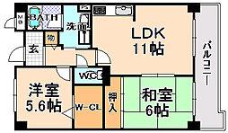 兵庫県伊丹市北園2丁目の賃貸マンションの間取り