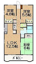 埼玉県さいたま市浦和区駒場2丁目の賃貸マンションの間取り