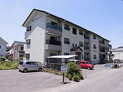 和歌山県海南市岡田の賃貸マンションの外観