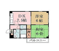 埼玉県草加市瀬崎4丁目の賃貸マンションの間取り