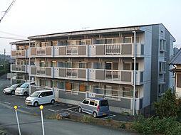 三重県伊勢市桜木町の賃貸マンションの外観