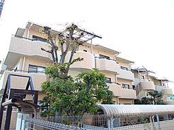 愛知県長久手市杁ヶ池の賃貸マンションの外観