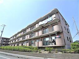 埼玉県越谷市千間台東3丁目の賃貸マンションの外観