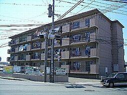 美萩ビル[4階]の外観
