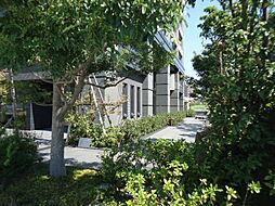 浜松駅 19.5万円