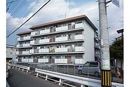 京都府京都市右京区太秦椙ケ本町の賃貸マンションの外観