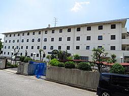 シェルフブラン南甲子園[4階]の外観
