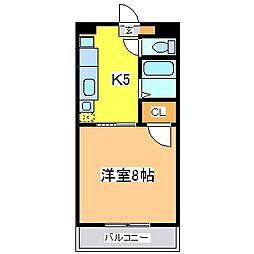 広島県東広島市西条中央 8丁目の賃貸マンションの間取り