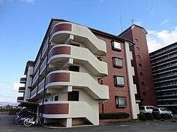 センチュリーアスカ3[5階]の外観