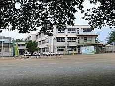 小学校東村山市立秋津小学校まで590m