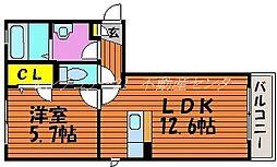 岡山県岡山市中区平井5丁目の賃貸アパートの間取り