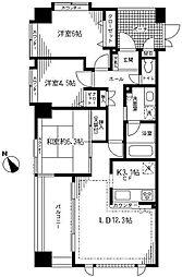 シテラ川崎グラフォンテ(定期借家契約3年)[10階]の間取り