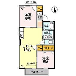 愛知県岡崎市井ノ口新町の賃貸アパートの間取り