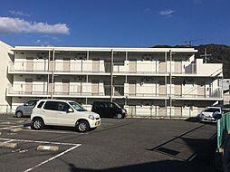 広島県広島市安佐北区可部南4丁目の賃貸マンションの外観