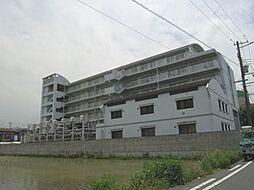 ハイデ上町[605号室]の外観