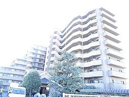 埼玉県川越市大字的場の賃貸マンションの外観