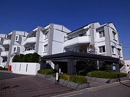 千葉県船橋市七林町の賃貸マンションの外観