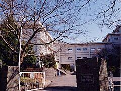 神奈川 県 逗子 市 池子