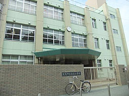 小学校大阪市立安立小学校まで783m