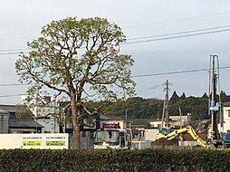 宮崎県宮崎市南花ケ島町の賃貸マンションの外観