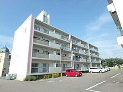 桜ヶ丘マンションE[250号室]の外観
