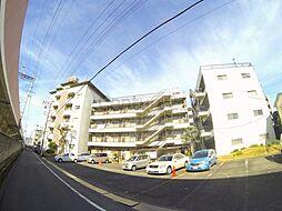 松栄石橋ハイツ[4階]の外観