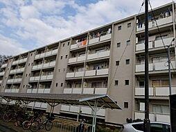 神奈川県厚木市三田南1丁目の賃貸マンションの外観