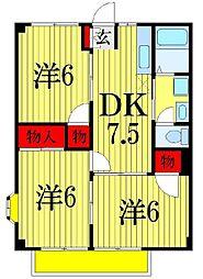 千葉県船橋市田喜野井2丁目の賃貸マンションの間取り