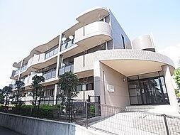 千葉県松戸市常盤平柳町の賃貸マンションの外観